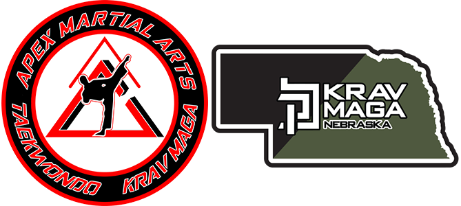Apex Martial Arts Krav Maga