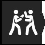 Apex Martial Arts - self-defense