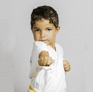 ATA Martial Arts Apex Martial Arts Karate for Kids